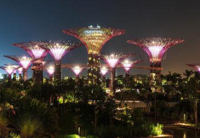 Ботанические сады, которые поразят ваше воображение
