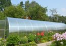 Теплицы и другое оборудование для выращивания культурных растений: где покупать