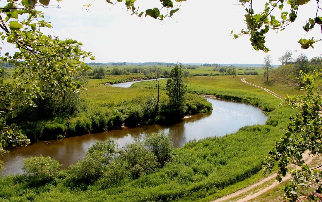Природа Владимирской области